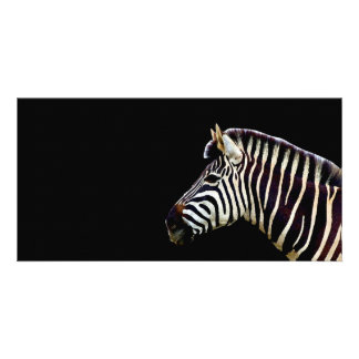 Zebra Head to Shoulder Photo Greeting Card